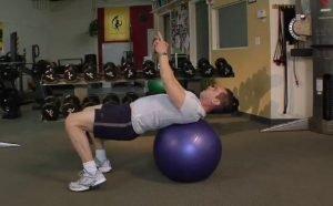 Ball Plank with Torso Rotation